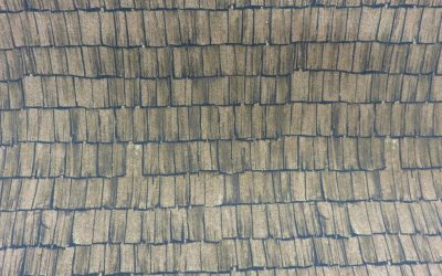 Weathered Roof Brown – Michael Miller – DCX9300-BROW (3147)